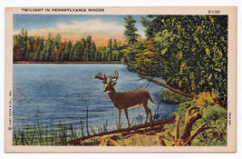 1930-1945 Twilight In PA Woods Lake River Deer Buck Animal Linen Nature ... - $9.89