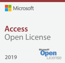 Microsoft Access 2019 Open License - $29.99