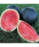 """"""" 10 PCS RARE Hokkaido Black Watermelon GIM """" - $11.18"""