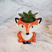 Animal Planters with Succulents, Fox and Raccoon, 3 inches, ceramic image 7