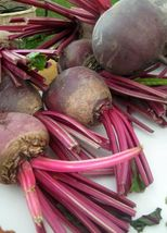 SHIP FROM US DETROIT BEETROOT 200 SEEDS AUTUMN BEETS NON-GMO VEGETABLE TGV1 - $12.00