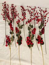 Vintage Red Berry Floral Picks Set 9 Longest 18 Inches Long - $29.69