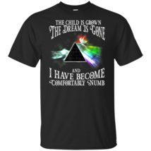 The Child Is Grown The Dream Is Gone Comfortably Numb T-Shirt - $17.99+