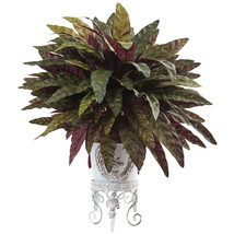 Peacock Bush with Metal Planter - $64.75