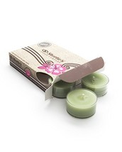 Tahoe Pine Green Tea Light Candles 6 Pack - Highly Scented, Hand Poured,... - $7.50