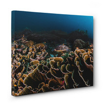 Blue and Yellow School of Fish Ocean CANVAS Wall Art Home Decor - $28.22