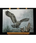 Spotted Owl Bird Art Made in USA Canvas Giclee Gallery Wrapped Print NIB... - $54.40
