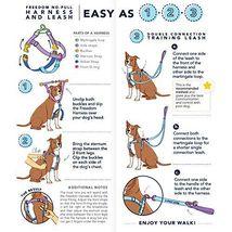 2Hounds Freedom No Pull Dog Harness Medium Paw Paisley WITH Training Leash!   image 5