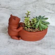 Winnie the Pooh Planter with Succulent Arrangement, Redware Animal Plant Pot image 5
