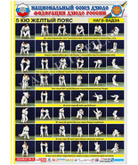 Posters JUDO. Yellow  belt  1 poster.The technique of judo. - $13.93