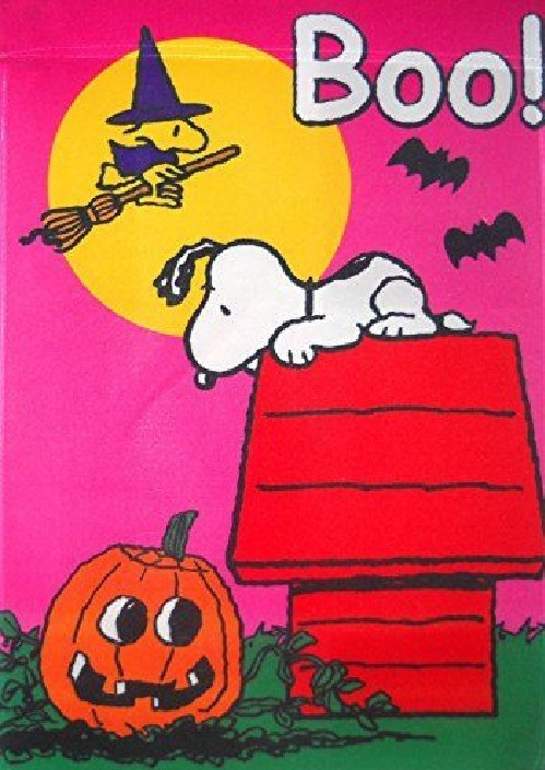"Peanuts Snoopy with His Friend Woodstock "" BOO ! "" Garden Flag 12"" X 18"" - $37.57"