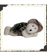 "Boyds Bear ""POKIE""  10"" Master of Disguise Turtle - #918662 ~NWT-2003- Retired - $24.99"