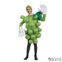 Morris Grapes Green Child Costume - £77.96 GBP