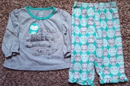 Girl's Size 12 M 9-12 Month Two Piece Pajama Set Carter's Green Owl Top ... - $13.00