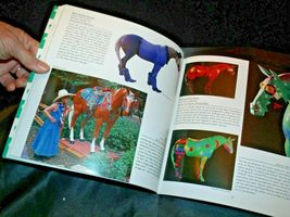 2nd Edition Trail of the Painted Pony Book AA-191999 Collectible  USA image 5