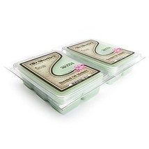 Cucumber Melon Wax Melts 2 Pack - Highly Scented - Similar to Yankee Candle Tart - $12.50