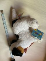 """Webkinz Jack Russell Terrier HM168 Soft Plush Animal Ganz W Code Tag 11"""" Used image 8"""