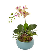 Phalaenopsis Orchid and Succulents in Decorative Vase - $78.35