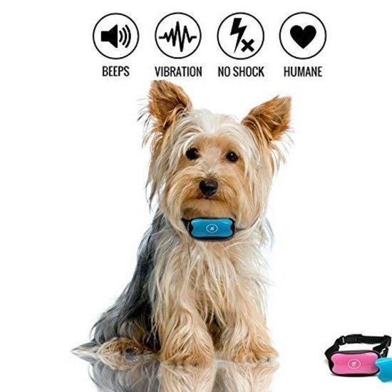 Anti Bark Collar Stop Dog Barking Collar No and 50 similar items