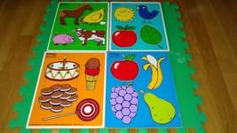 Vintage Playskool Puzzle Colors I see, Farm Animals, Favorite Fruits 4 pieces   - $44.55