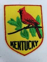 Vintage Voyager Kentucky State Bird Red Cardinal Collectible Patch Redbird - $5.27
