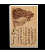 Cat Couple I Love You The Most CANPO75 Portrait Canvas .75in Framed - $25.00+