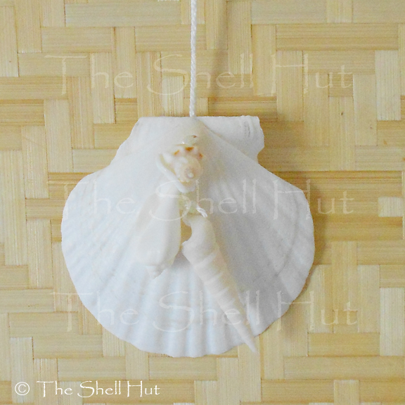 Beach Seashell Ornament Scallop Shell Wall Decor Christmas Tropical Beach House
