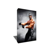 Wwf Wwe Hollywood Hulk Hogan Nwo 4 Life Poster Photo Painting On Canvas Wall Art - $36.00+