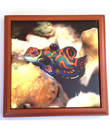 """Colorful Reef Fish Tile Plaque Framed Handmade 6"""" x 6"""" - $9.42"""