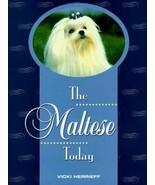 The Maltese Today : Vicki Herrieff : LikeNew Hardcover @ - $29.65