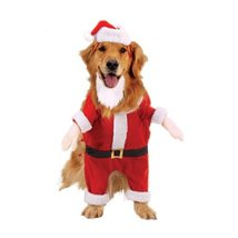 Casual Canine Kris Kringle Costume Xsm - £13.38 GBP