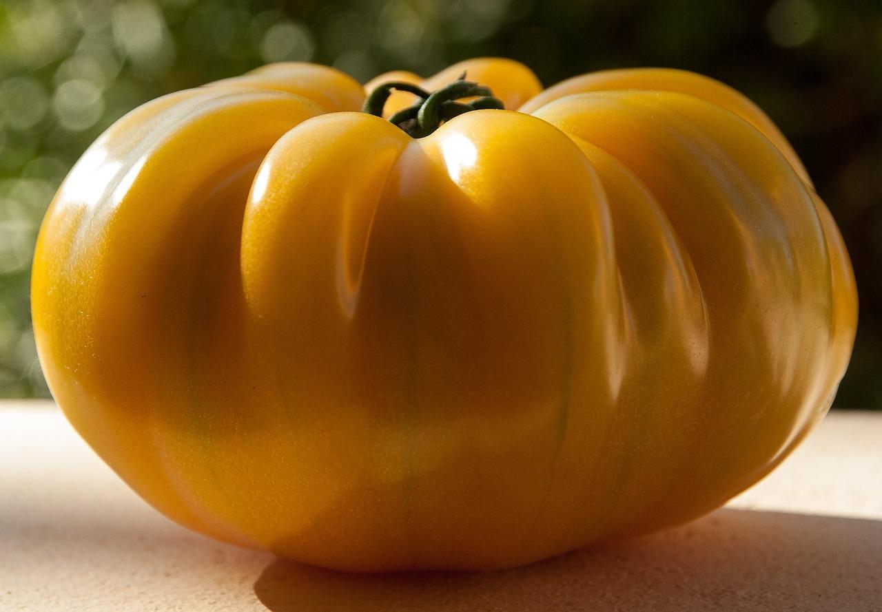 Tomato Seeds - Golden Queen (O)  - Vegetable Seeds - Outdoor Living - FREE SHIPP - $39.99 - $82.99