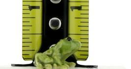 Hagen Renaker Miniature Frog Green Baby Ceramic Figurine image 2