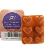 JOY 6Pc Odor-Eliminating Heart Wax Melts Pumpkin Spice NEW 443-180 - $6.90