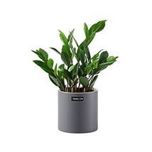 Plant Pots, 5.9inch Round Ceramic Orchid Pot Flower Pot Drainage Hole Pl... - $23.16