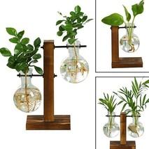 Hydroponic Plant Vases Glass Flower Bonsai pot Transparent Geometric Woo... - $9.01+