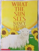 "What the Sun (Moon) Sees BIG Flip Book Paperback 18"" TallClass Size Tea... - $16.61"