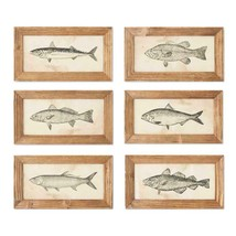 "Set of 6 Fish Prints in Wood Frames Wall Art 7"" H x 13"" W - $108.85"