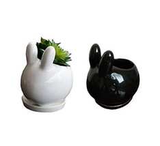 Youfui Cute Animal Succulent Planter Flower Pot Decor for Home Office De... - €14,92 EUR