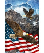 "Stars & Stripes 7 by Northcott-28"" x 43""-Digital Print-Eagles-American Flag - $13.95"