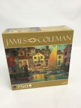 Puzzle 750 Pieces James Coleman Day's End 23.5 Inches x 15.5 Inches Sure... - $19.59