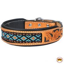 Strong Genuine Leather Dog Collar Padded Beaded Hilason U-C116 - $29.95