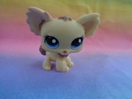 Hasbro Littlest Pet Shop Cream Chihuahua Puppy Dog Blue Dot Eyes #1171 -... - $305,25 MXN