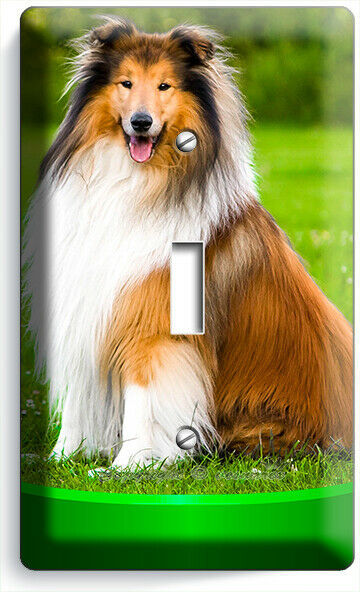 GORGEOUS ROUGH COLLIE DOG 1GANG LIGHT SWITCH WALL PLATE GROOMING PET SALON DECOR
