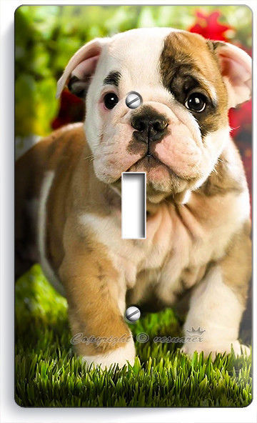 CUTE FRENCH BULLDOG PUPPY DOG LIGHT SWITCH OUTLET WALL PLATE COVER ROOM HD DECOR