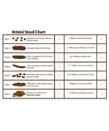 Bristol Stool Chart vinyl sticker 25x16cm poo poop medical advisory heal... - $4.75