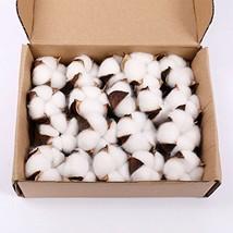 Darget Cotton Balls Decor - 20 Pieces for Wreath Decor Cotton Bolls Ball... - $22.37