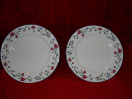 Lenox Rose Garden set of 2 dinner plates - $15.79