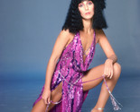 Cher Sexy Rare 70'S Photo Shoot 16x20 Canvas Giclee