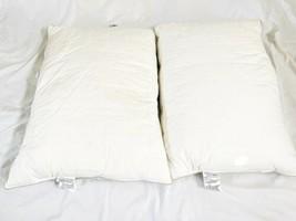 "Set (2) Lot Laura Ashley Home Feather Jumbo Pillow Insert 20"" x 28"" image 2"